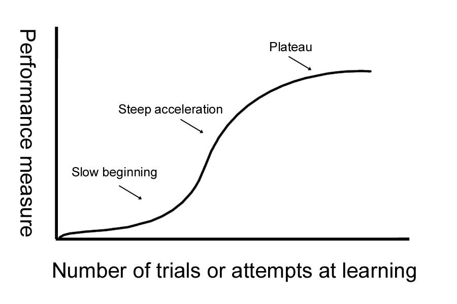 Language level performance plateau
